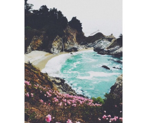 beach, flowers, and tumblr image