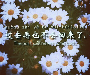 chinese quotes daisy image