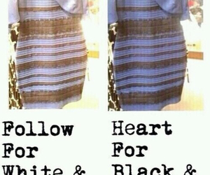 dress, trend, and follow heart image