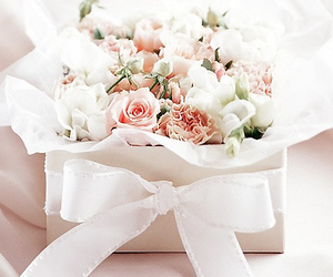 flowers, rose, and bow image