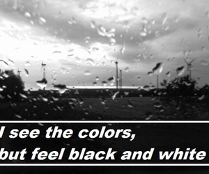 sayings, black, and quotes image