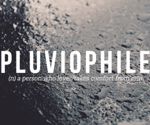 rain, pluviophile, and words image