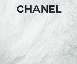 chanel, white, and wallpaper image