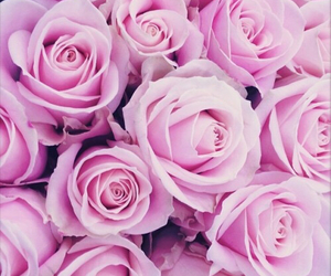 flowers, pink, and glamour image