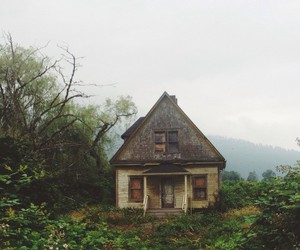 green, grunge, and habits image