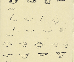 eyes, mouth, and nose image