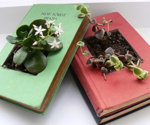 book, plants, and flowers image