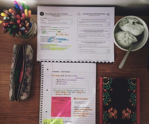 notes, motivation, and pen image