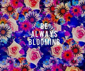 bloom, quote, and flower image