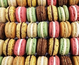 chocolate, food, and macarons image