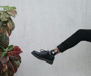 docs, socks, and mona lisa image