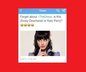 funny, katy perry, and lol image
