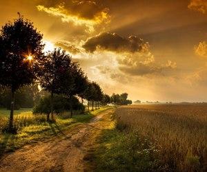 light, nature, and sunrise image