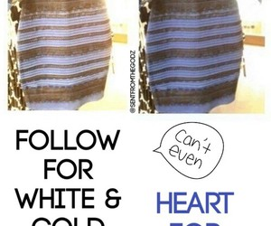 dress, white and gold, and blue and black image