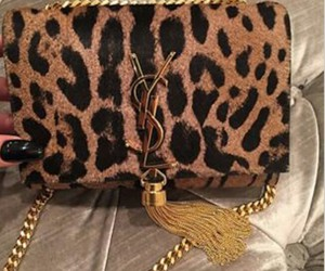 bag, YSL, and crossbody image