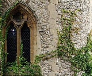 window, castle, and ivy image