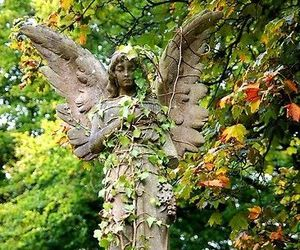 angel, nature, and statue image