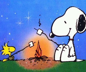 snoopy, marshmallow, and woodstock image
