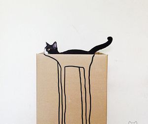 cat, funny, and black image