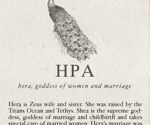 hera, greek, and mythology image