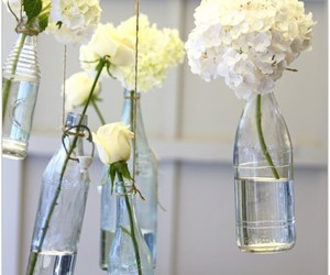 flowers, white, and bottle image
