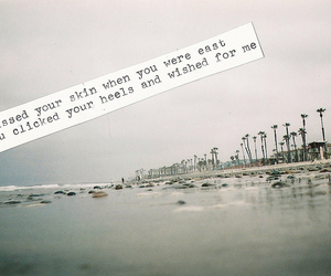 P!ATD, bands, and Lyrics image