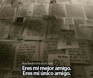 frases and amigos image