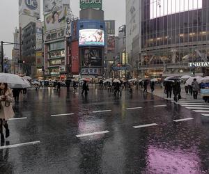 japan, rain, and aesthetic image