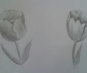 black & white, drawing, and flowers image