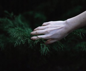hand, pale, and plants image