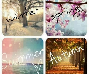 winter, spring, and summer image