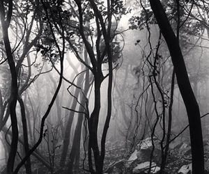 black and white, creepy, and eerie image