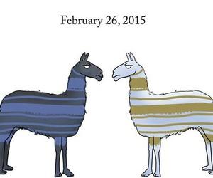 black, blue, and february image