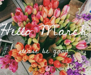 flowers, march, and good image