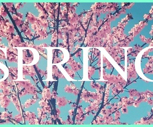 march, spring, and beautiful image