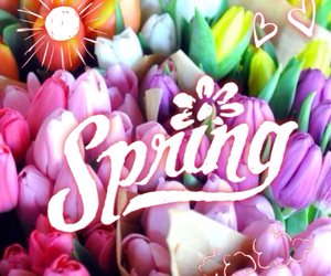 flowers, march, and nature image