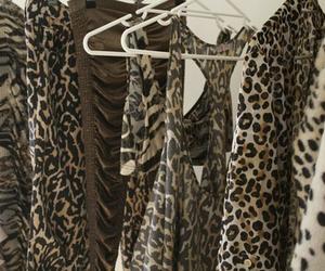 fashion and cheetah print image