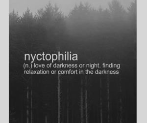 Darkness, night, and quotes image