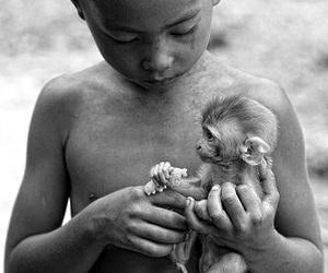 monkey, animal, and boy image