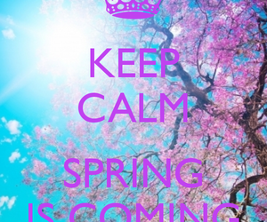 spring, keep calm, and flowers image