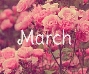 flowers, march, and hello march image