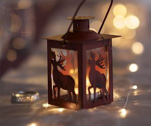elk, lamp, and rustic image