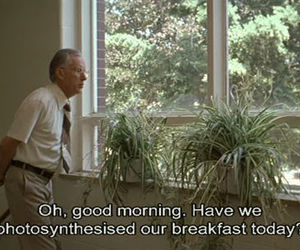 plants, the virgin suicides, and quote image