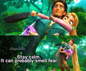 funny, tangled, and disney image