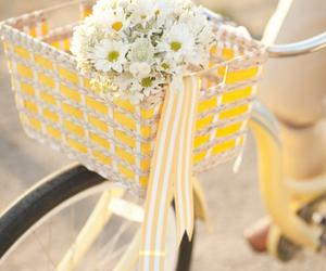 flowers, bike, and yellow image