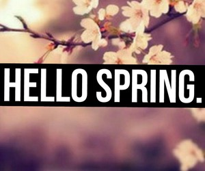 beautiful, hello, and spring image