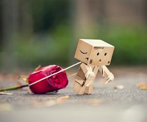 rose, box, and danbo image