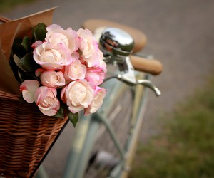 bike, flowers, and rose image