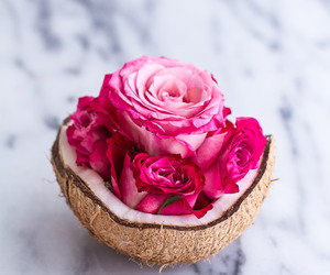 coconut and rose image