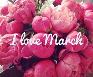 flowers, march, and peony image
